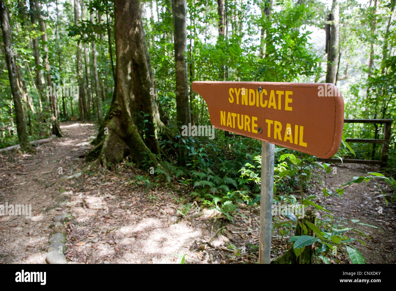 Syndicate Nature trail sign in primary rain forest of Dominica West Indies - Stock Image