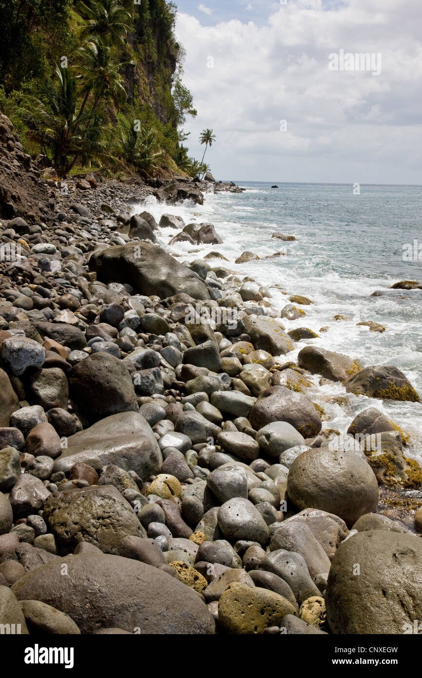 Stony beach by the Caribbean forming part of segment 13 of the Waitukubuli National Trail in Dominica West Indies - Stock Image