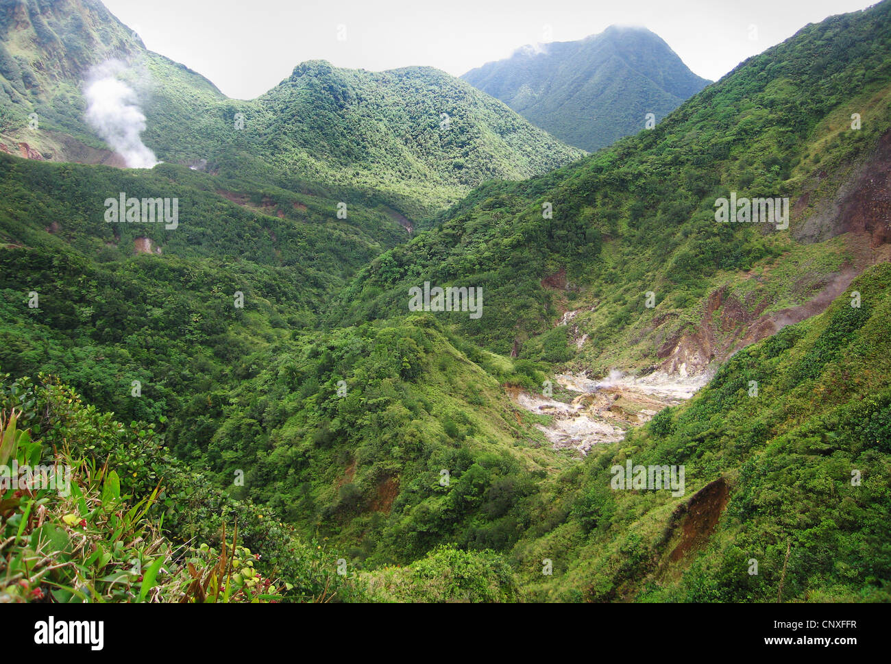 The Valley of Desolation and the steaming Boiling Lake in the distance on the mountainous island of Dominica in Stock Photo