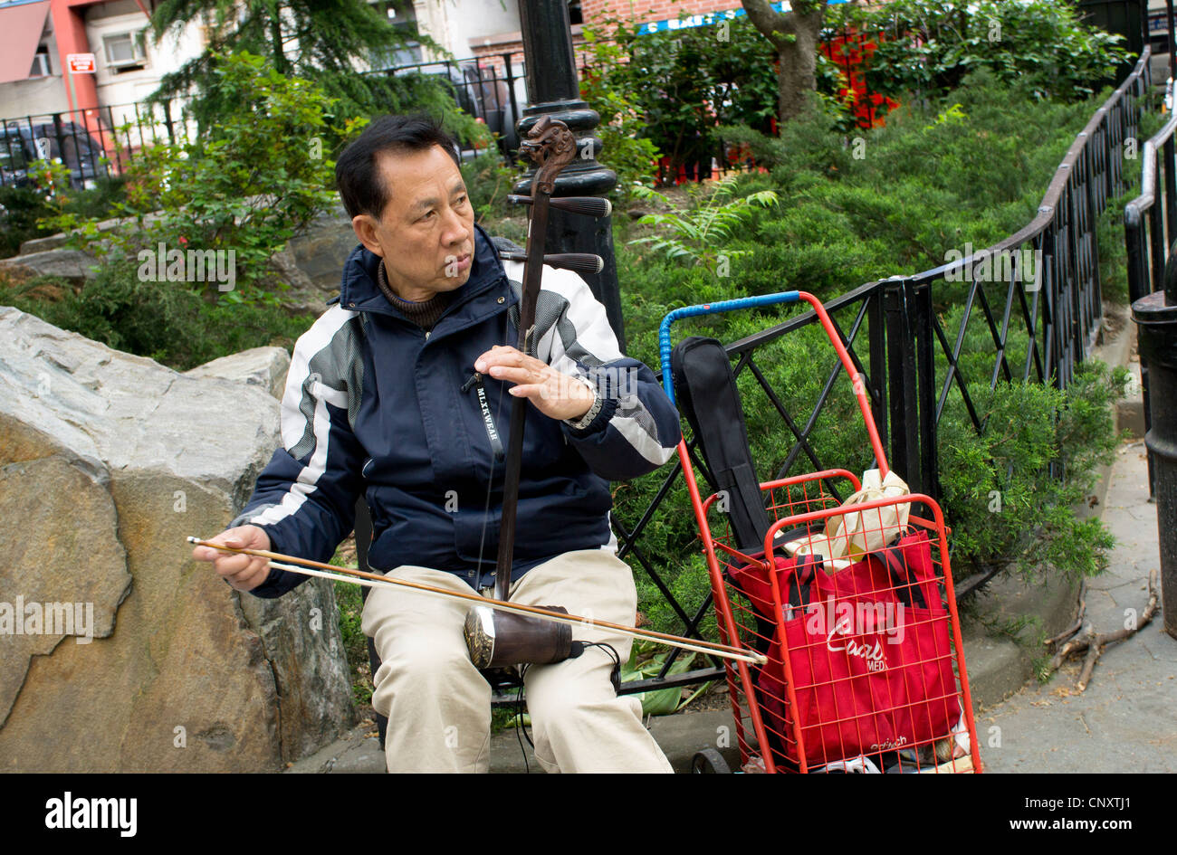 An Asian erhu player in Columbus Park in Chinatown, New York City. - Stock Image