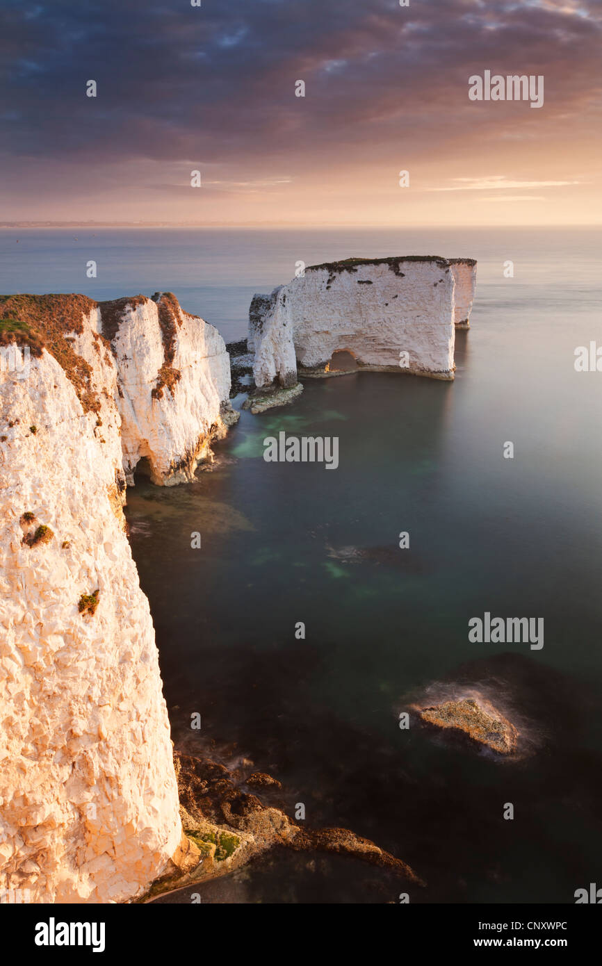 Old Harry Rocks at sunrise, Studland, Dorset, England. Spring (April) 2012. - Stock Image