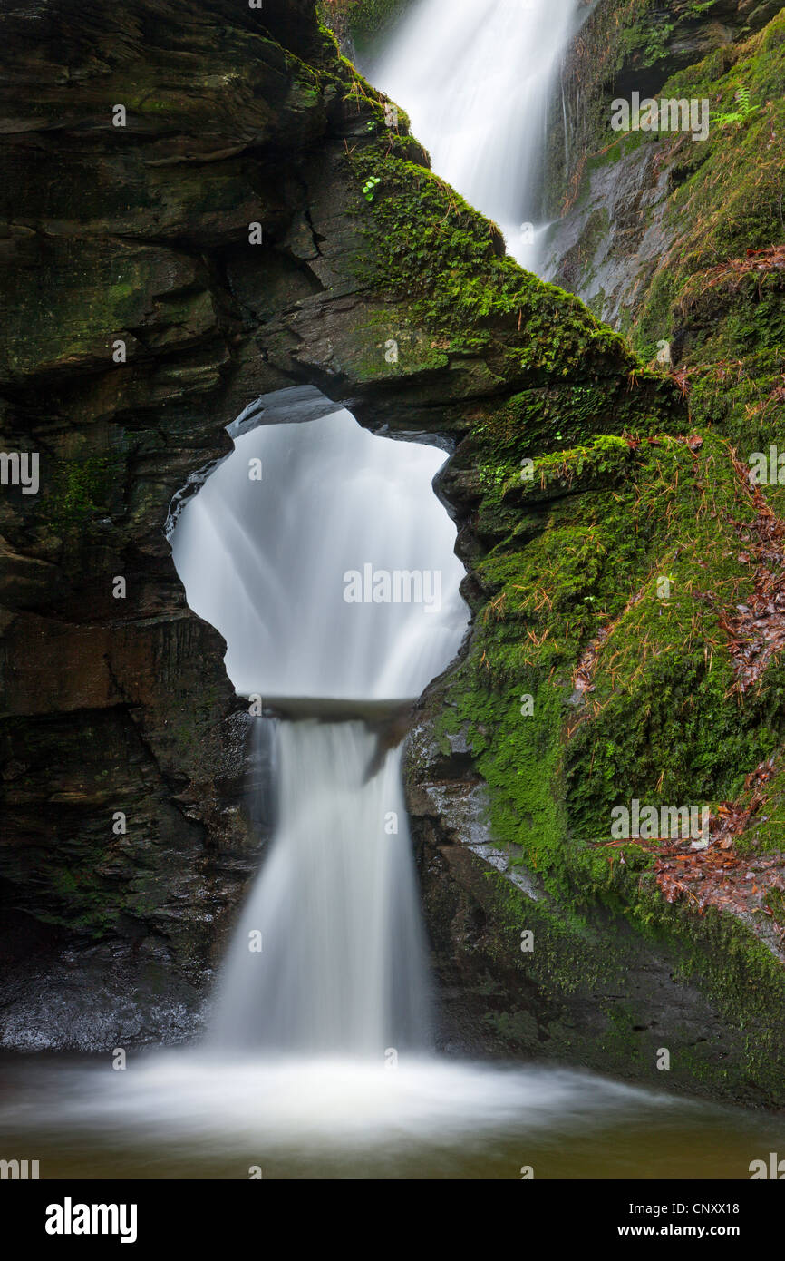 St Nectan's Kieve waterfall in St Nectans Glen, Near Tintagel, Cornwall, England. Spring (April) 2012. - Stock Image