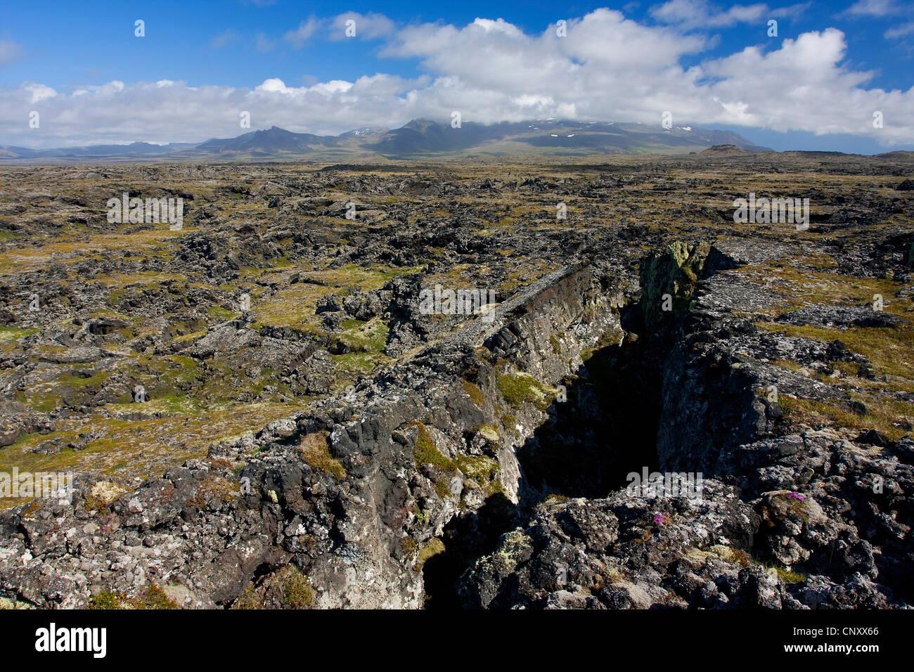 lava field on Snaefellsnes peninsula, Iceland, Snaefellsnes - Stock Image