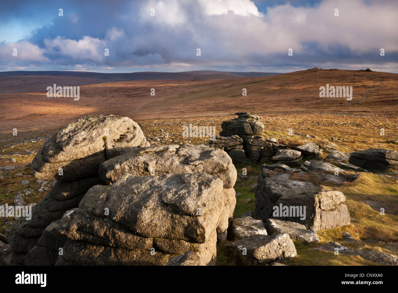 High Willhays, the highest summit in Southern Britain, viewed from Yes Tor, Dartmoor, Devon, England. Spring (April) - Stock Image
