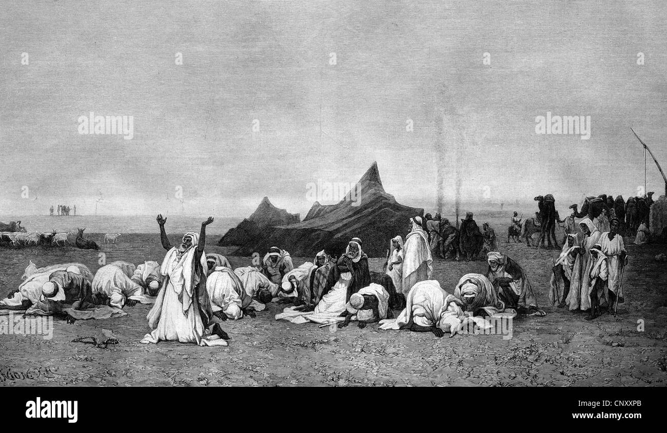 Arabs during evening prayer in the desert, historic wood engraving, about 1897 - Stock Image