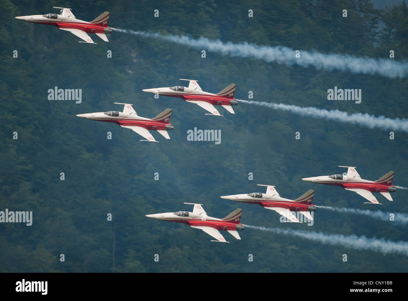 Patrouille Suisse with Tiger jets during an airshow in Mollis 2009, Switzerland - Stock Image
