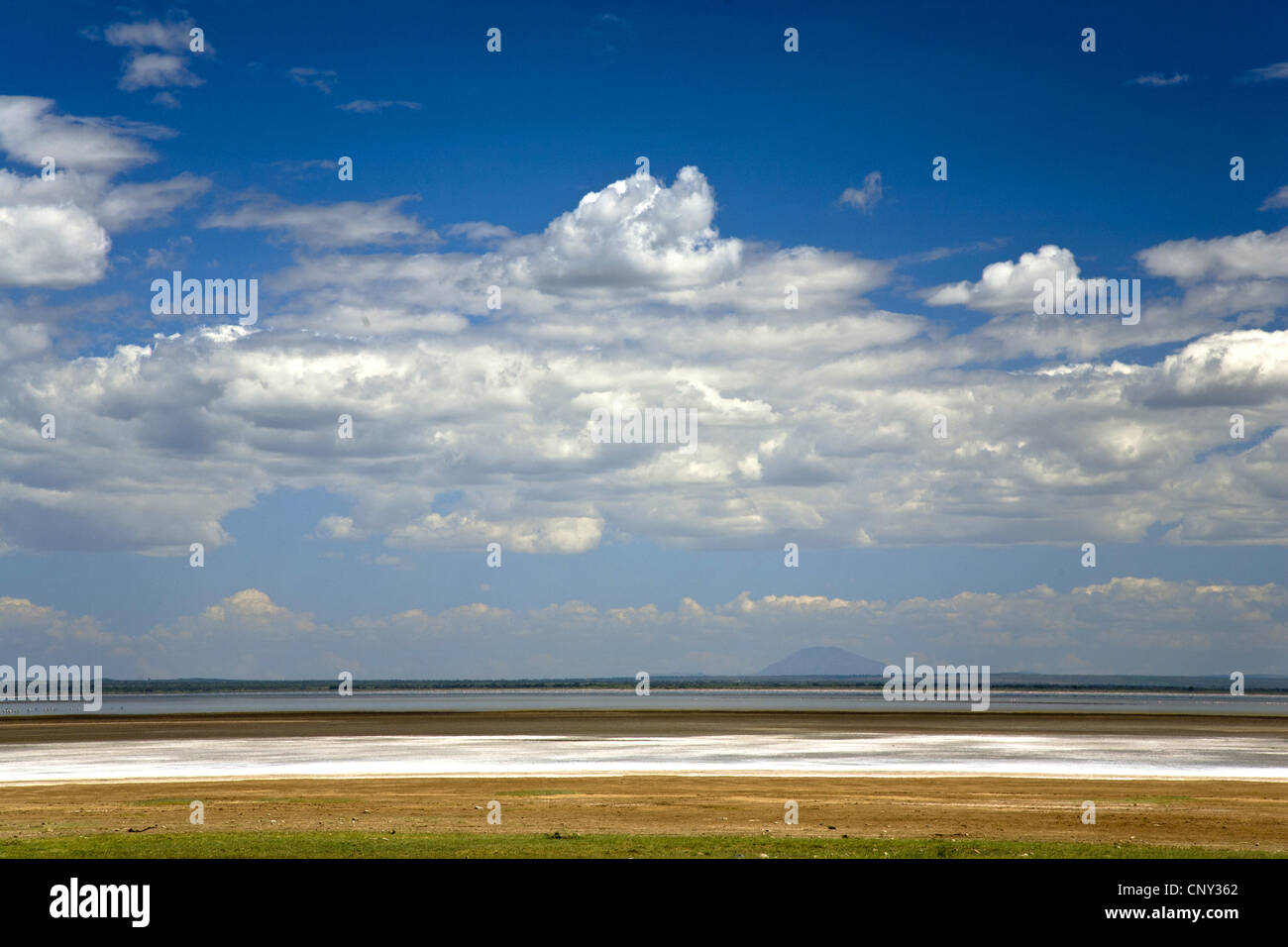 Salt lake in Lake Manyara National Park, Tanzania, Lake Manyara National Park - Stock Image