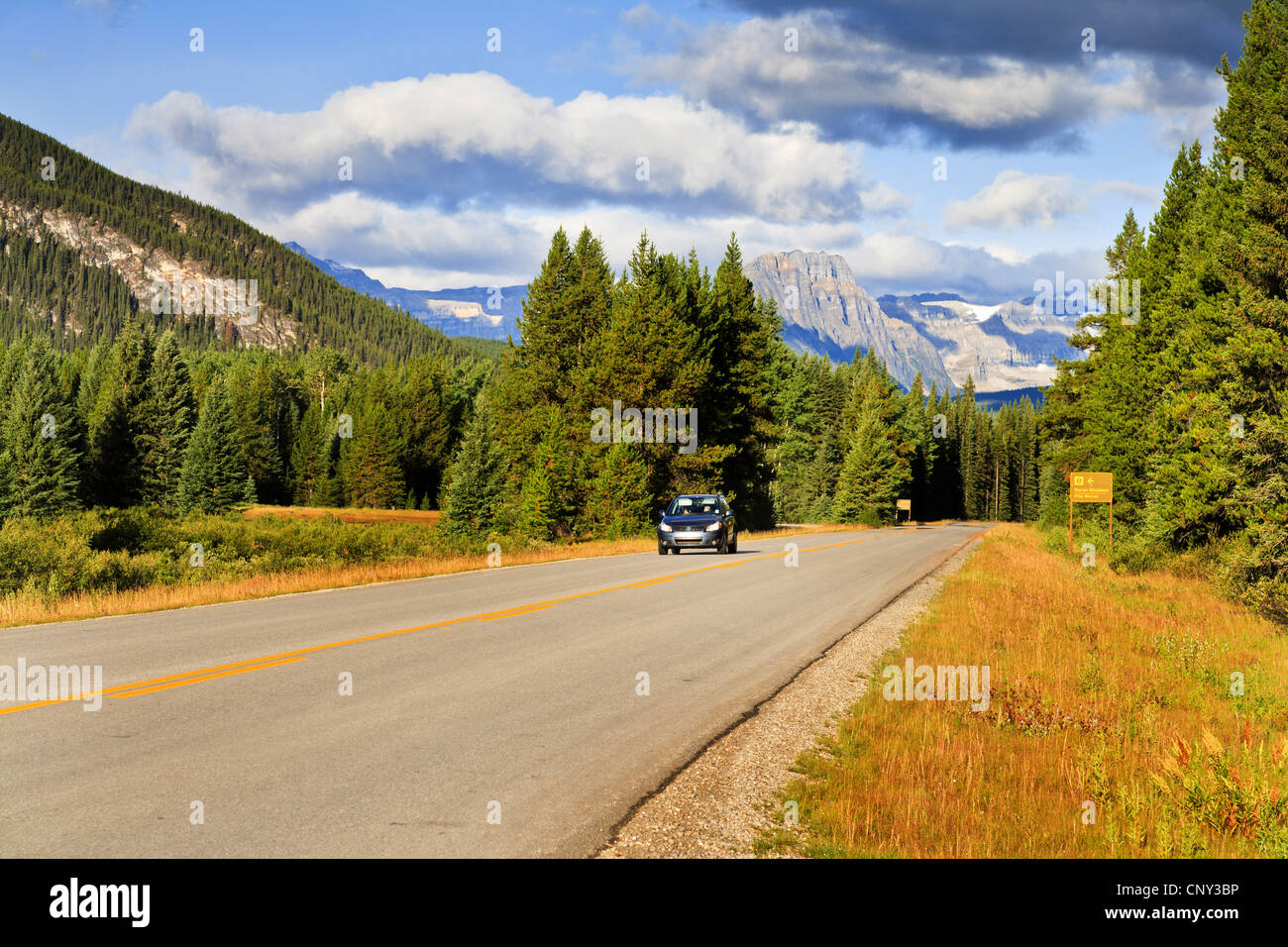 passenger car on a road through the National Park, Canada, Alberta, Banff National Park - Stock Image
