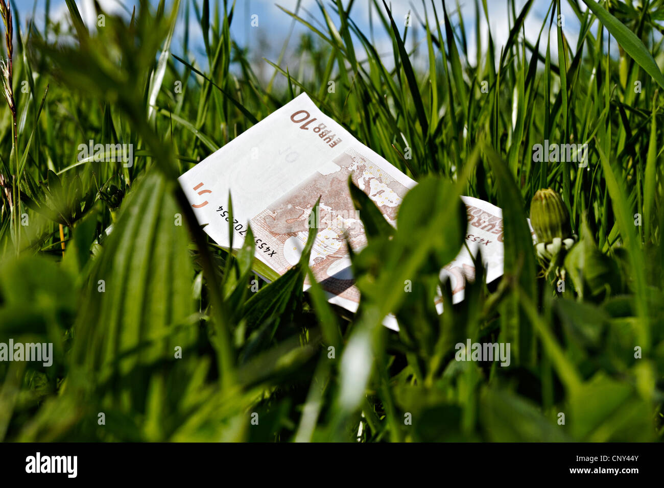 10 euro bank note laying in long green grass Stock Photo