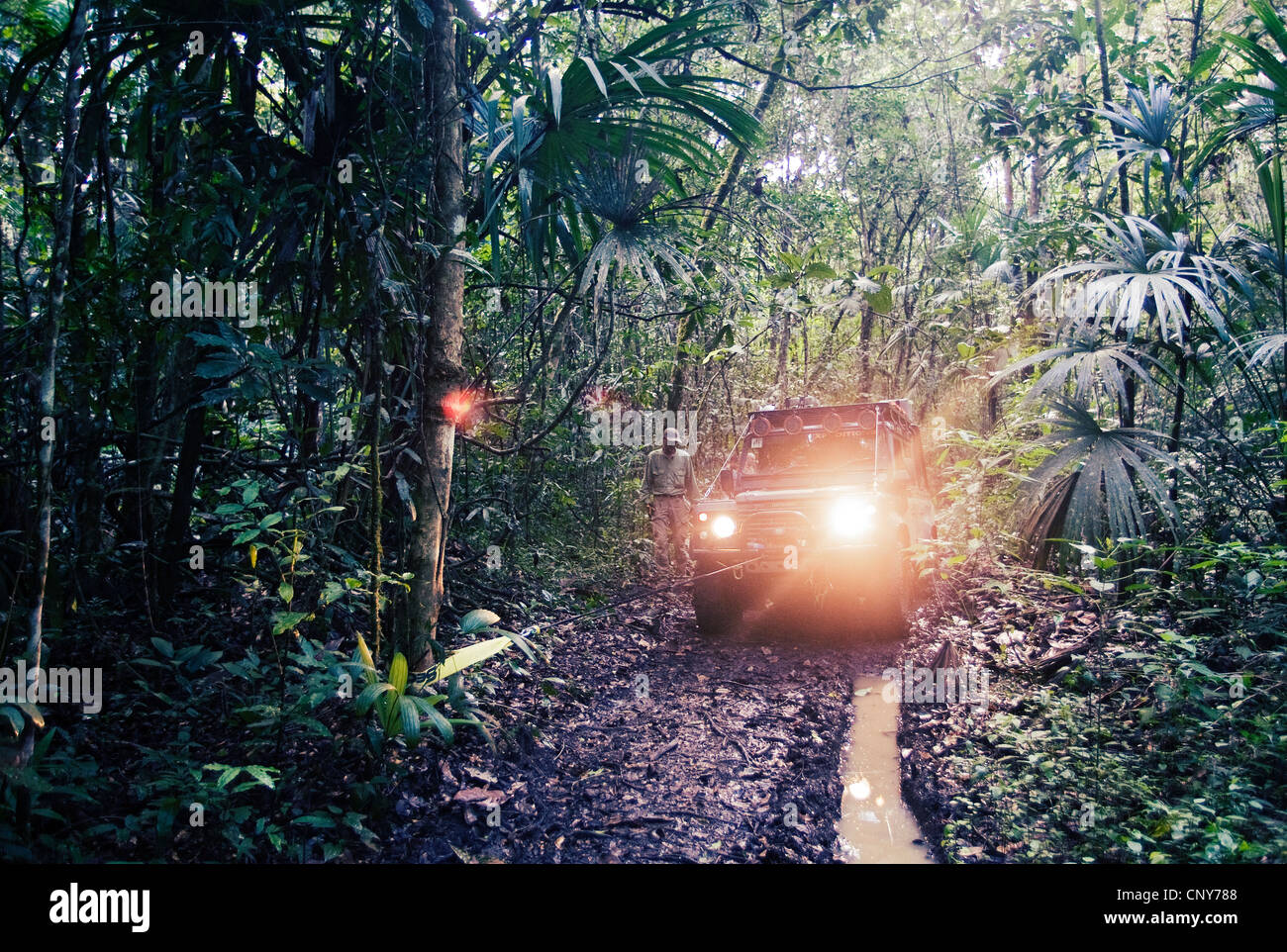 Monkey river trail, Belize - Stock Image