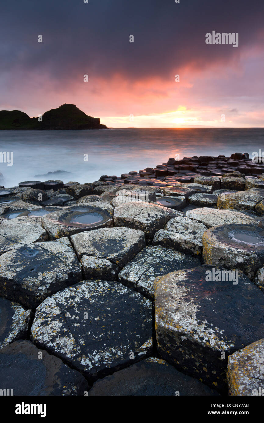 Sunset on the Giants Causeway, County Antrim, Northern Ireland. September 2008 - Stock Image