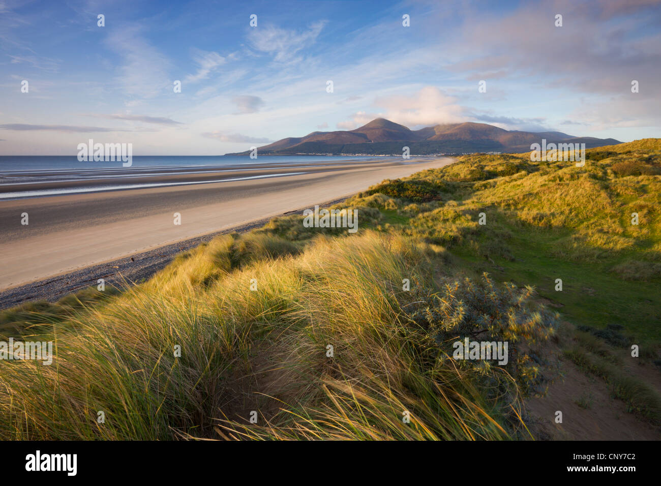 Sand dunes at Murlough alongside Dundrum Bay, with the Mountains of Mourne in the background, County Down, Northern - Stock Image