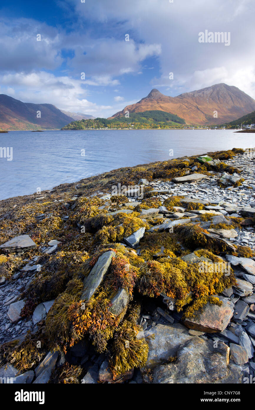 The Pap of Glencoe from the shores of Loch Leven, Ballachulish, Highland, Scotland - Stock Image