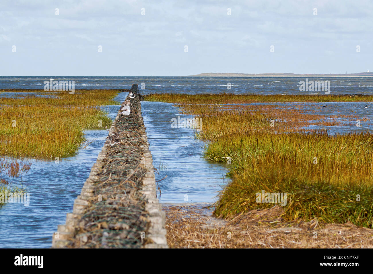 spur dike in the wadden sea, Germany, Lower Saxony, East Frisia, Dornumersiel - Stock Image