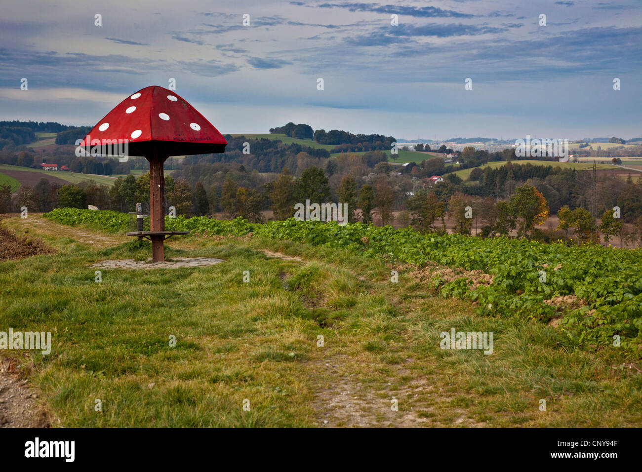 shelter for hikers modelled on a fly agaric on a ridge of hills between fields, Germany, Bavaria, Isental, Dorfen - Stock Image