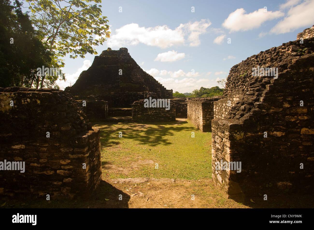 Caracol Maya ruins, belize - Stock Image