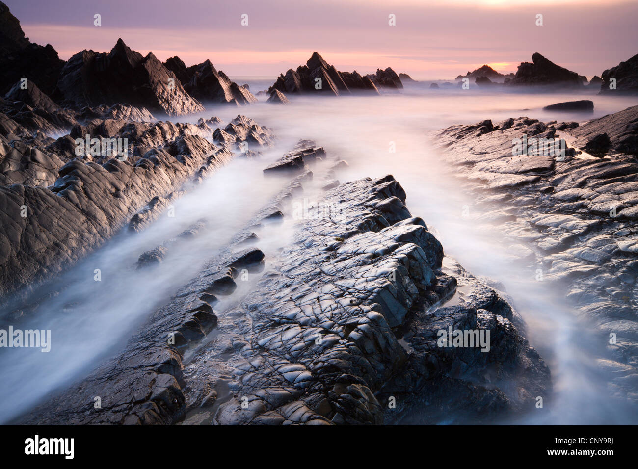 Dramatic coastal scenery at sunset, Hartland Quay, Devon, England. Spring (April) 2010. - Stock Image