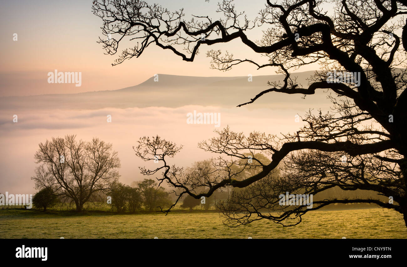 A thick blanket of early morning mist covers the landscape below Mynydd Troed in the Brecon Beacons National Park, - Stock Image