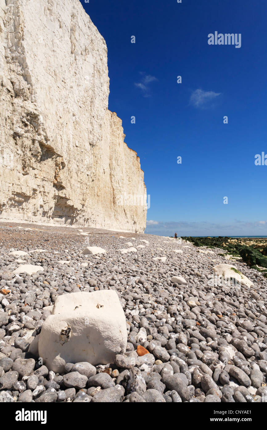Chalk cliffs and beach at Beachy Head, East Sussex, England. - Stock Image