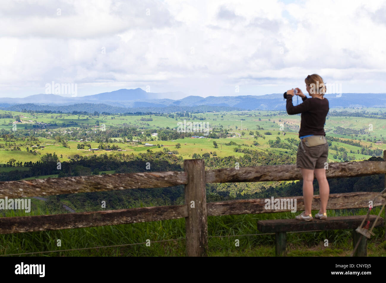 young woman standing on a bench an taking photos of undulating hills of the Atherton Tablelands, Australia, Queensland, - Stock Image