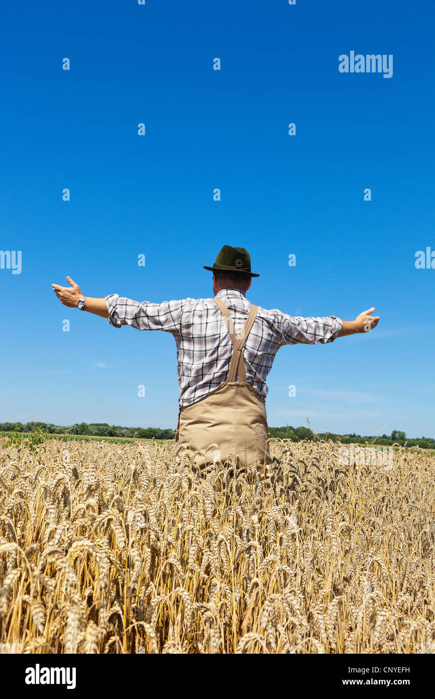 bread wheat, cultivated wheat (Triticum aestivum), farmer standing in his mature wheat contently spreading his arms, - Stock Image