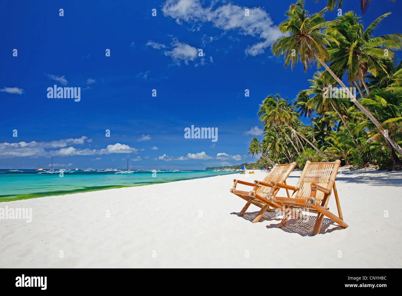 two canvas chairs on palm tree beach - Stock Image