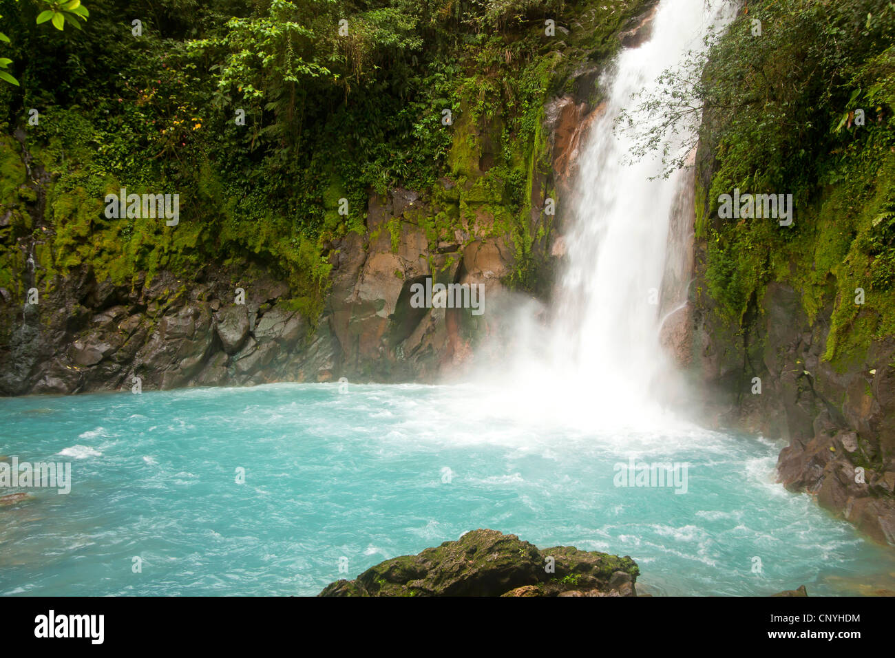 Waterfall with the blue waters of the Rio Celeste in VolcanTenorio National Park, Costa Rica, Central America - Stock Image