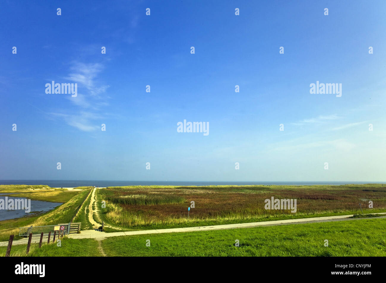 saltmarshes and beach in Schillig, Germany, Lower Saxony, Frisia Stock Photo