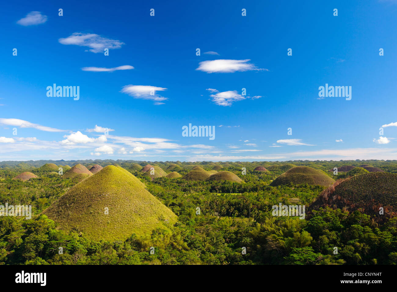 Chocolate Hills,unusual geological formation, Philippines, Bohol - Stock Image