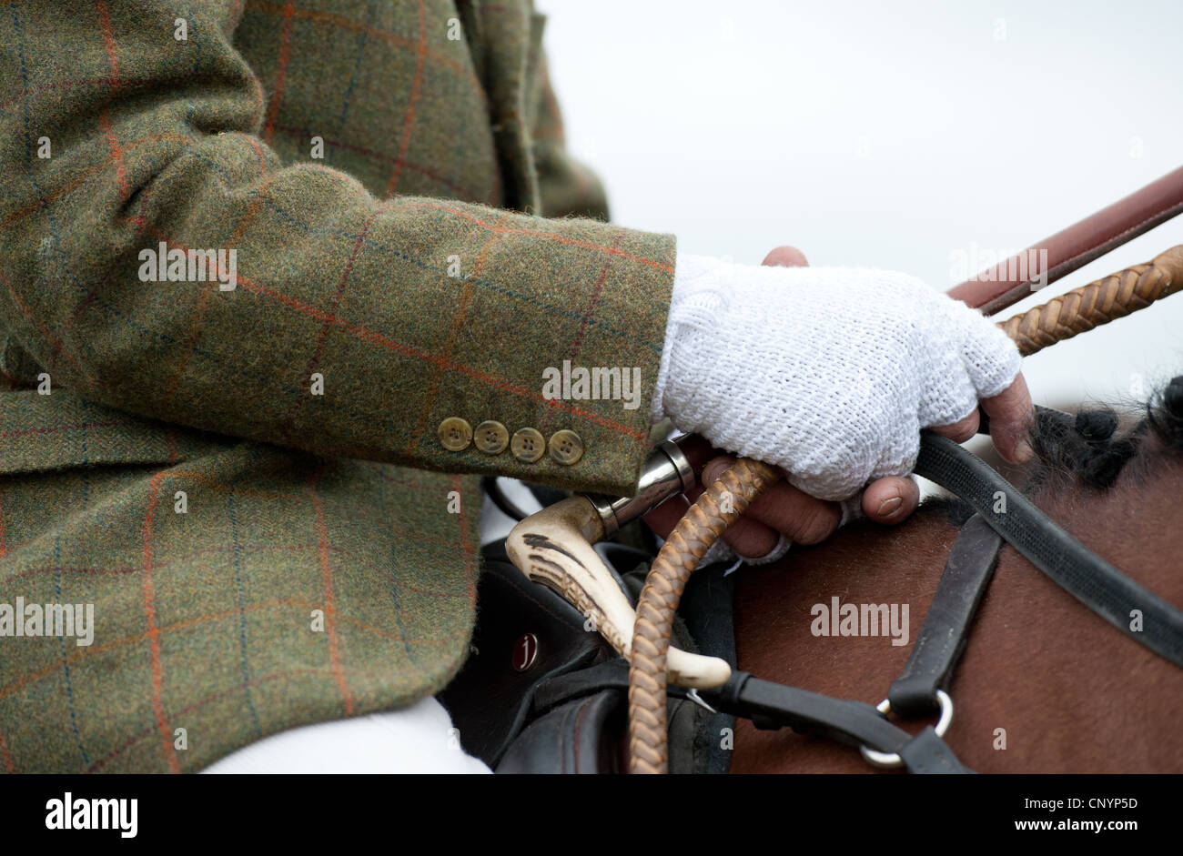 Hunting tweed and crop - Stock Image