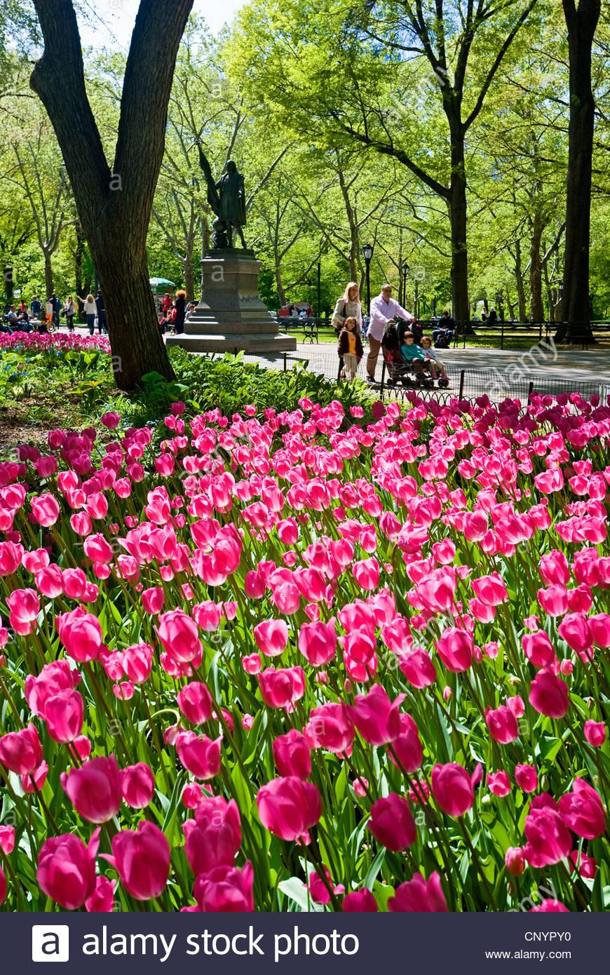 Poets Walk Central Park Stock Photo