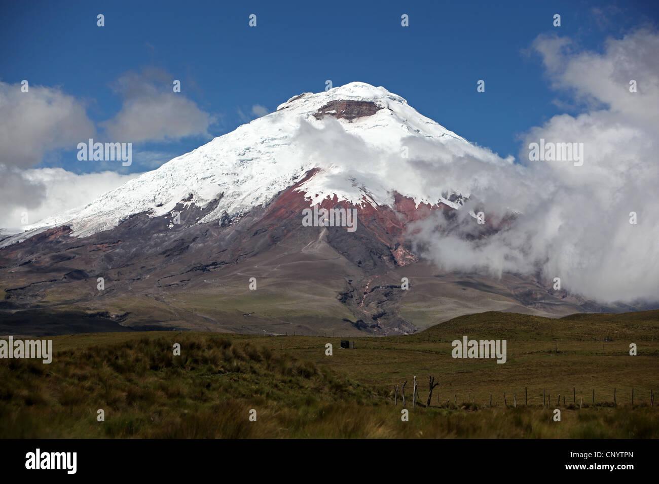 Cotopaxi volcano, Ecuador, Cotopaxi National Park - Stock Image