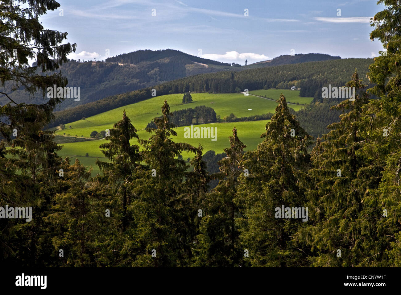 view of hilly landscapes from Bruchhauser Steine, Germany, North Rhine-Westphalia, Olsberg - Stock Image