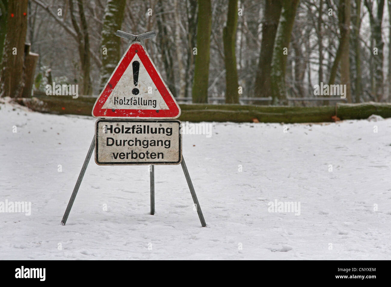 warning sign at forest works in winter, Germany, North Rhine-Westphalia Stock Photo