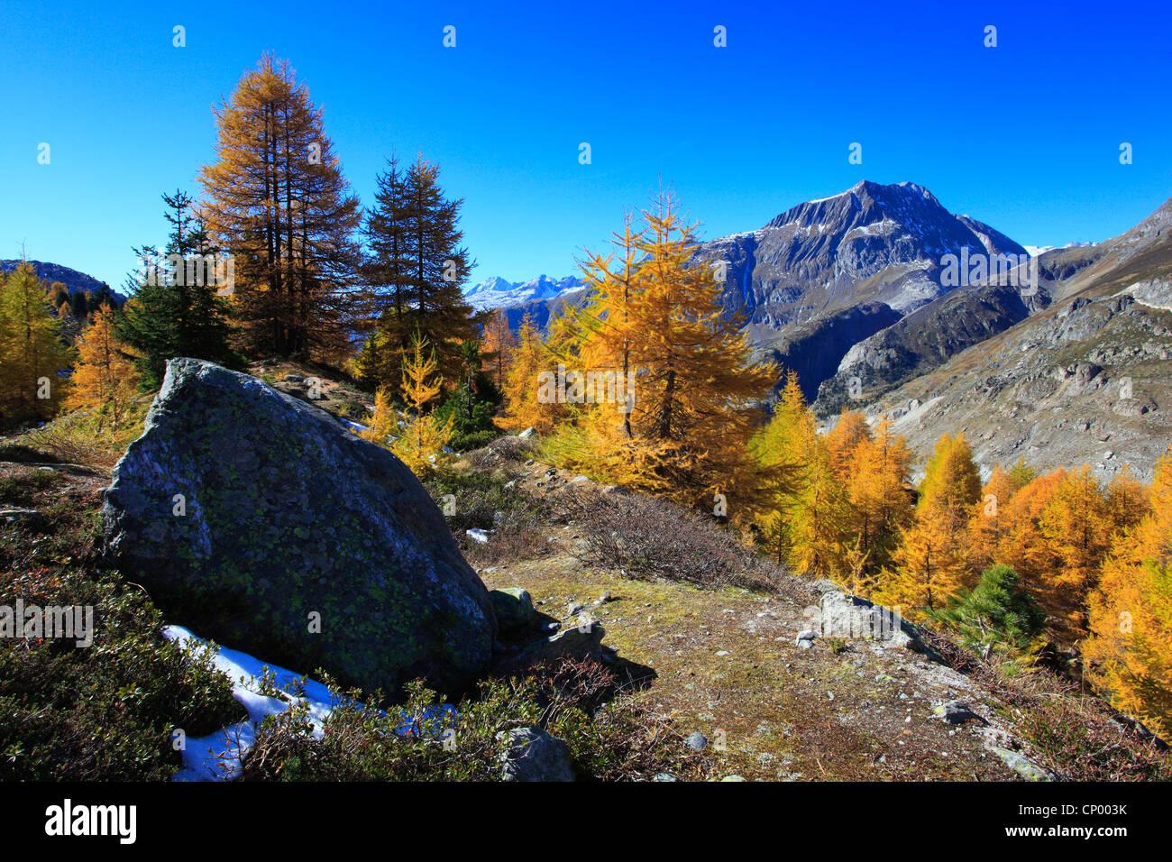Aletsch area, Switzerland, Valais Stock Photo