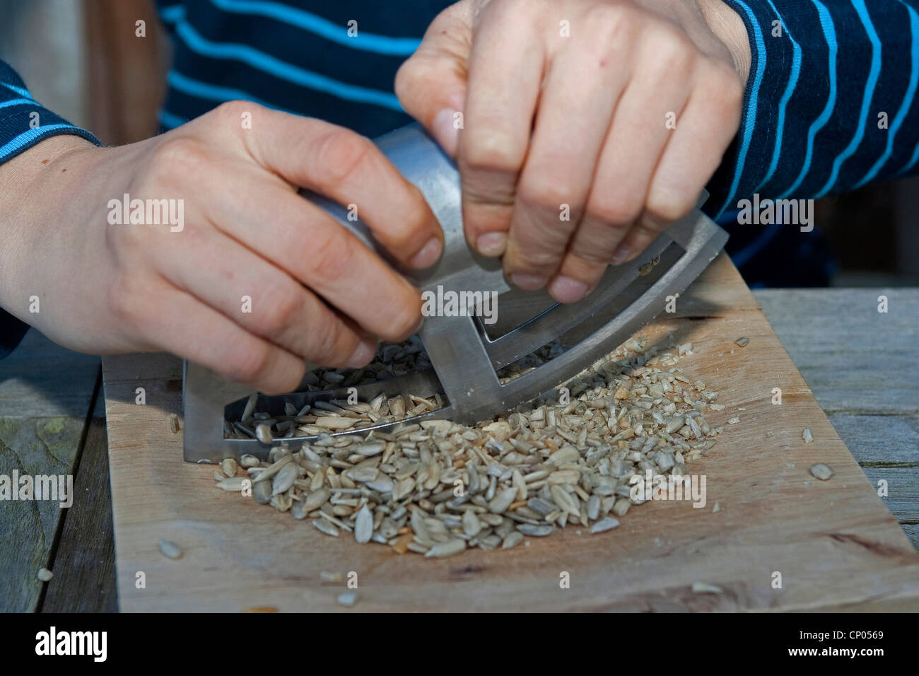 boy making pesto from self-collected walnuts and sunflower seeds, olive oil and parmesan cheese, sunflower seeds - Stock Image