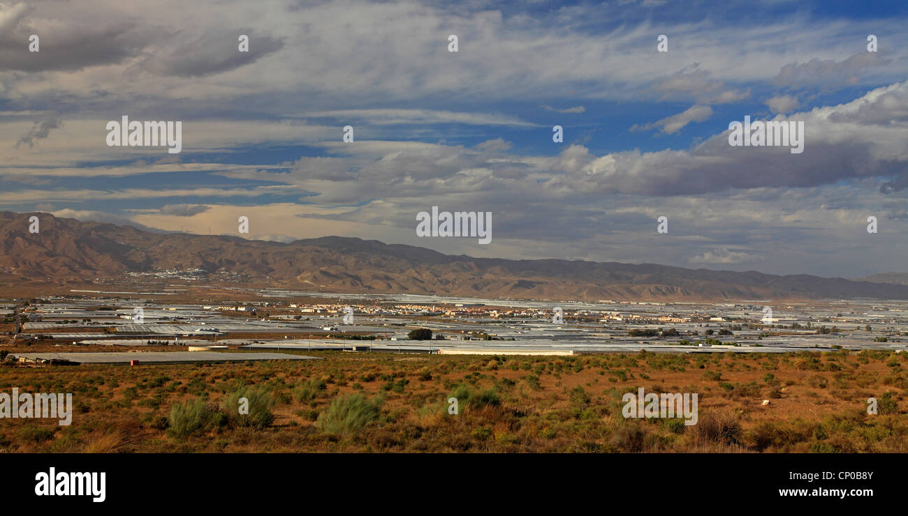 landscape with greenhouses, Spain, Las Castilias de Atochara - Stock Image