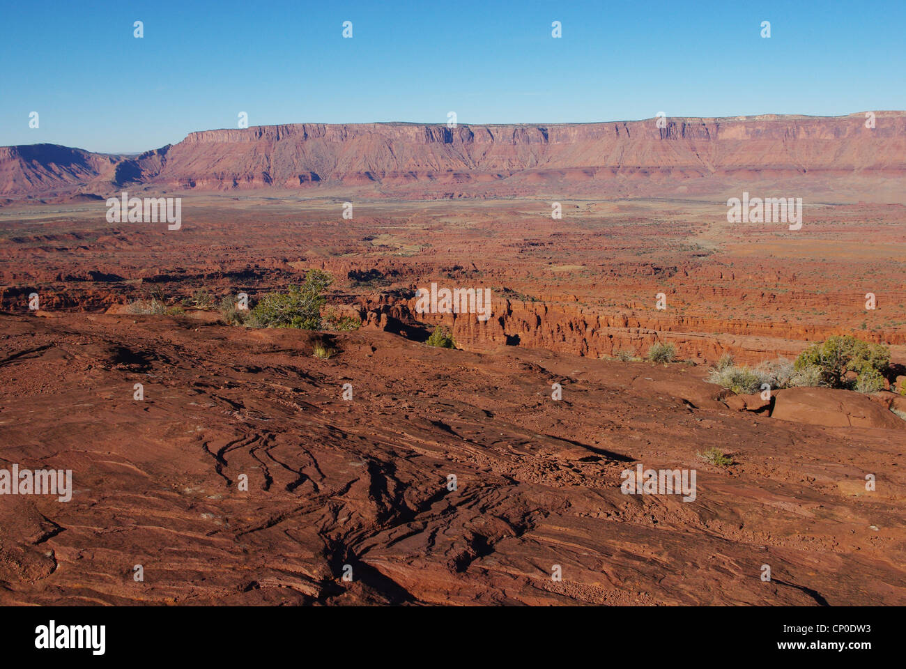 Red rocks and green Colorado River valley, Utah Stock Photo