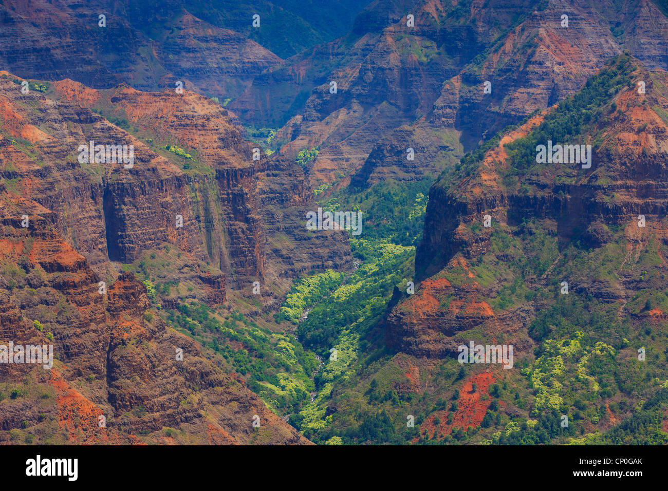View over Waimea Canyon. Kauai, Hawaii - Stock Image