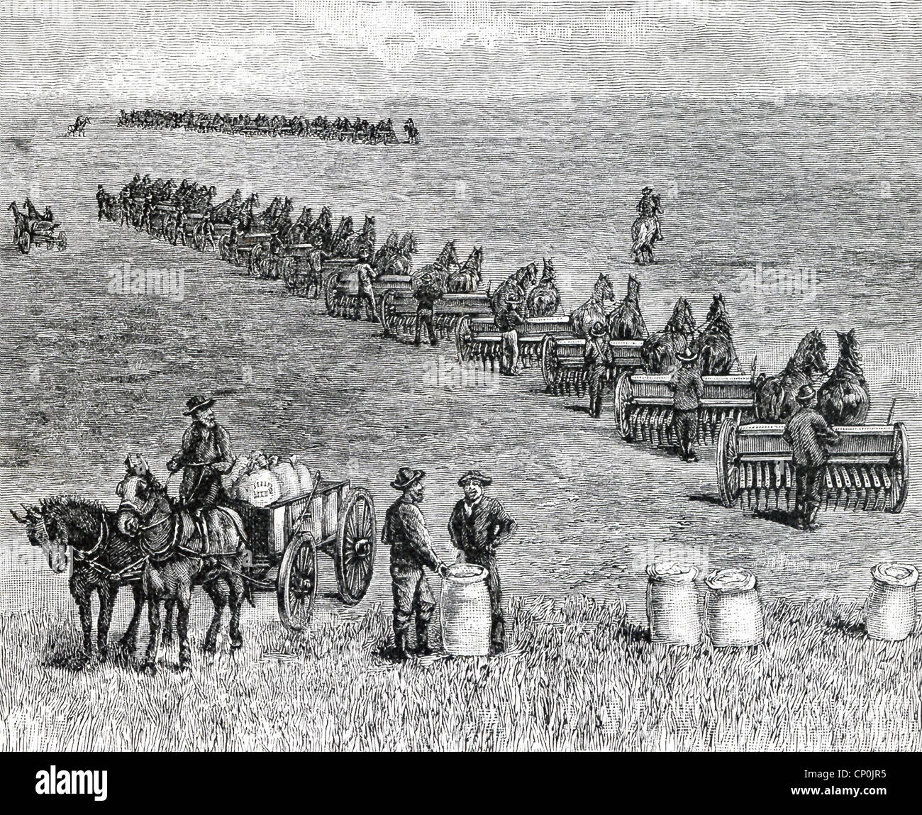 A bonanza farm, a phrase used in US in the 1870s, referred to very large farms harvested mostly wheat, being seeded - Stock Image