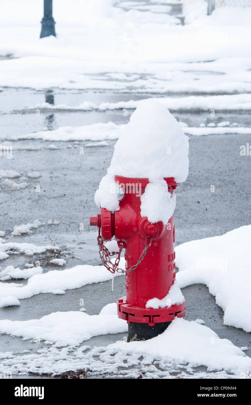 Red fire hydrant covered by wet winter snow, Livingston, Montana, USA - Stock Image