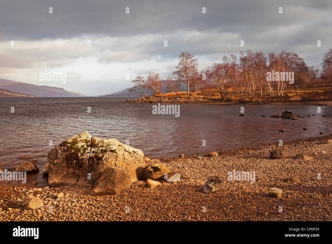 Loch Rannoch (south side) - Stock Image