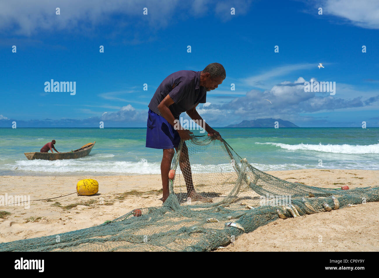 Local fisherman taking fish from the nets that have just been brought in from the Indian Ocean, Seychelles, - Stock Image