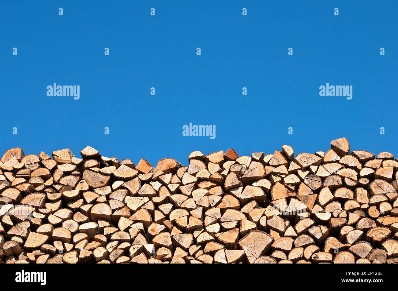 Stack of wood - Stock Image