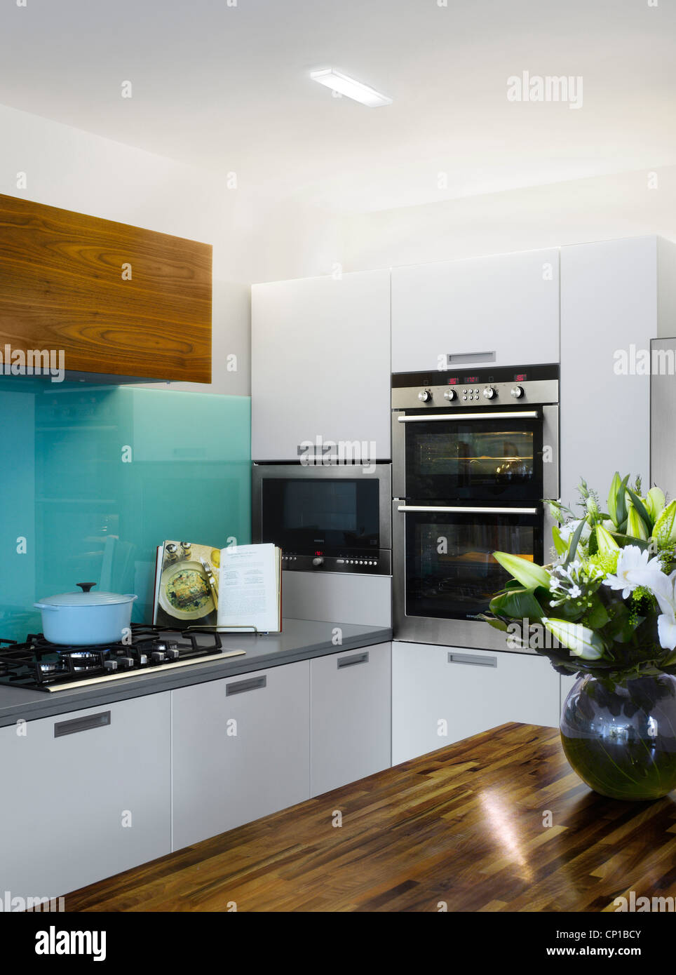 Cooking appliances in kitchen extension in semi detached house, Paul Archer Design, London, UK. - Stock Image