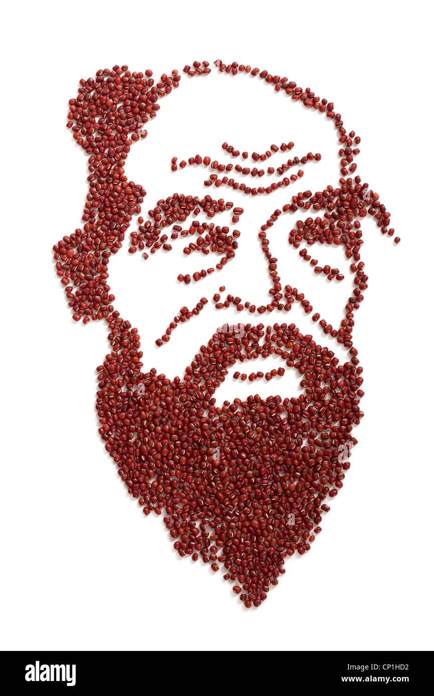 Portrait of Confucius made of red beans Stock Photo