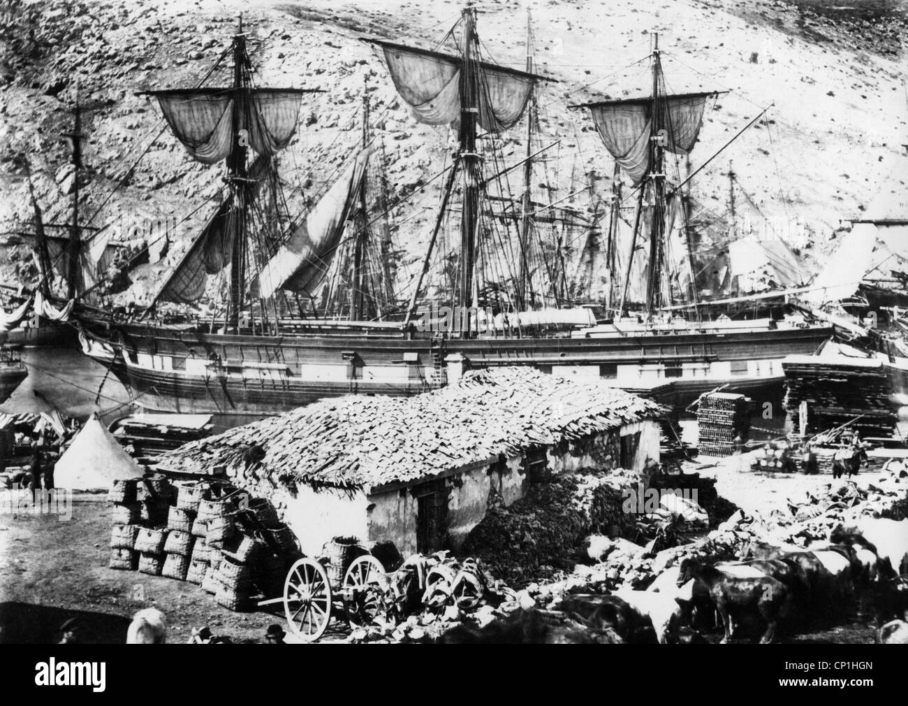 Crimean War 1853 - 1856, siege of Sevastopol 17.10.1854 - 9.9.1855, British supply ships at the roadstead of Balaklava, - Stock Image