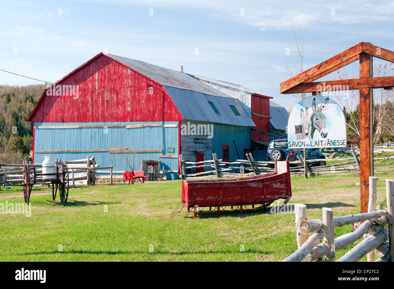 Donkey farm in Port-au-Persil, region of Charlevoix, province of Quebec, Canada. - Stock Image
