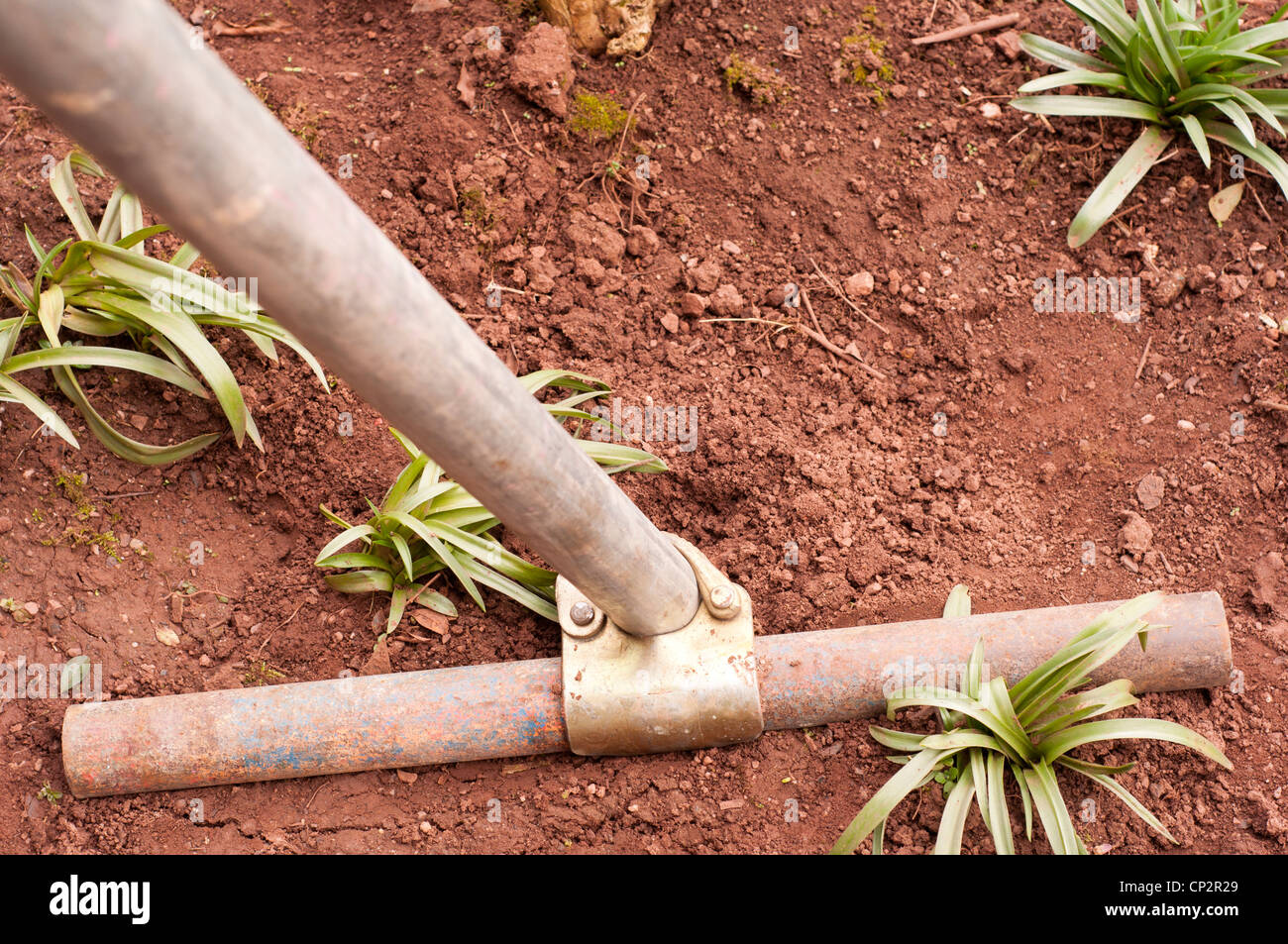 Scaffolding base with short pole connected across braced against soft ground. - Stock Image