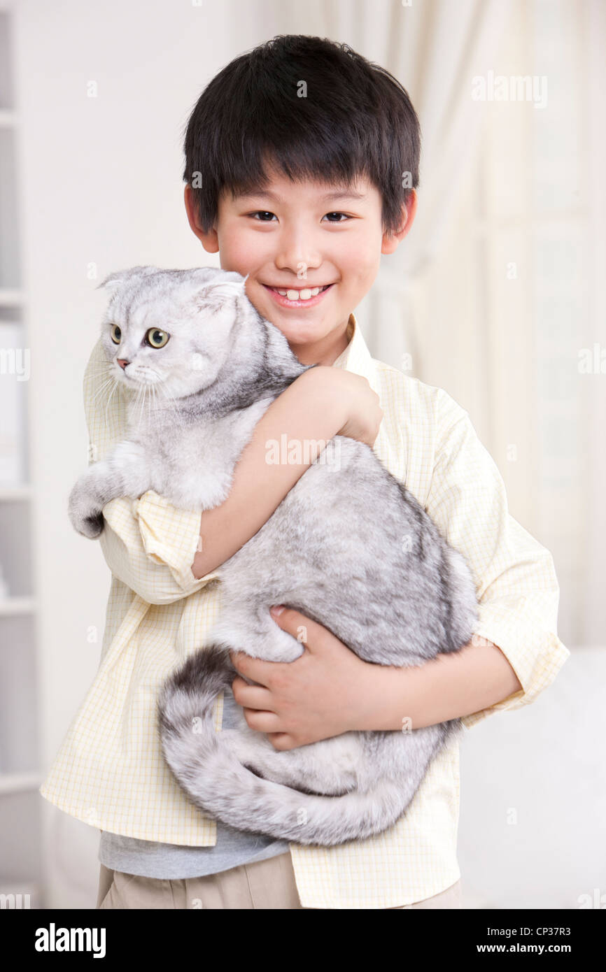 Young boy playing with a Scottish Fold cat - Stock Image